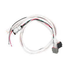 Mega System Wiring Harness - 12 Output