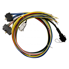 3ft pre-made wiring harness with CAN and serial port connectors